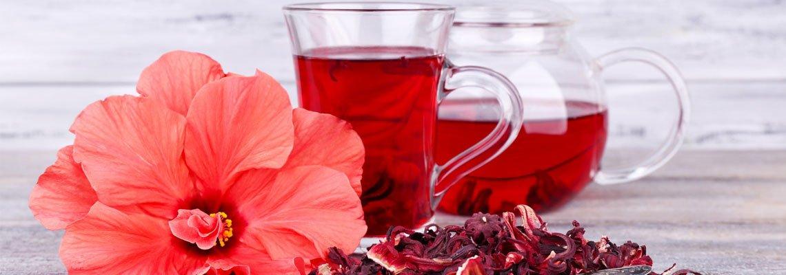 Hibiscus en thé
